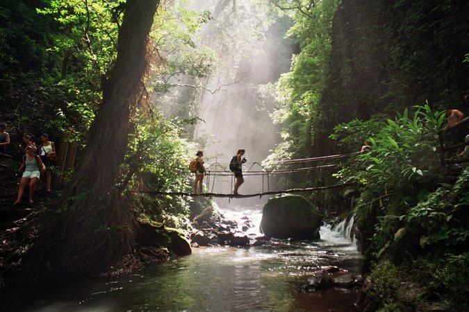 Hiking jungle